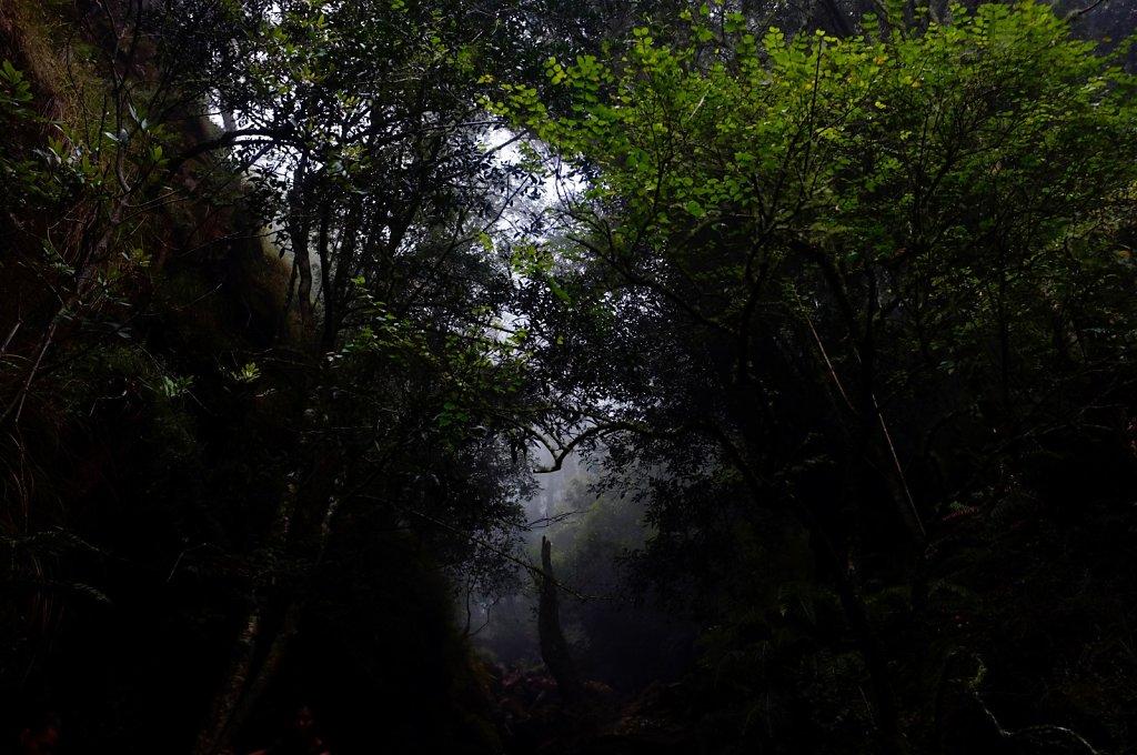 Expedition-Wonderland-160.jpg